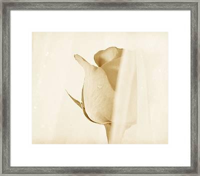 Sweetest Illusion Framed Print