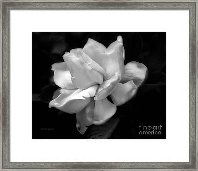 Sweetest Romance Framed Print
