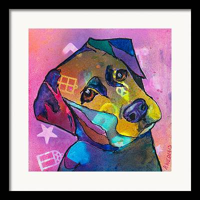Mixed Labrador Retriever Mixed Media Framed Prints