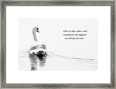 Sweetness And Elegance Framed Print