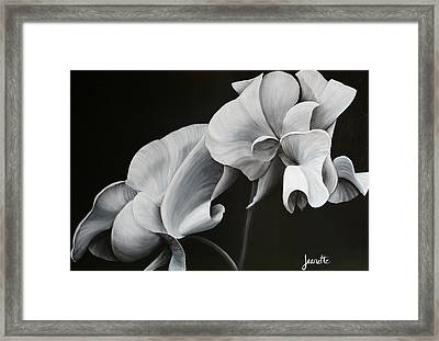 Sweetpea Blossoms Framed Print