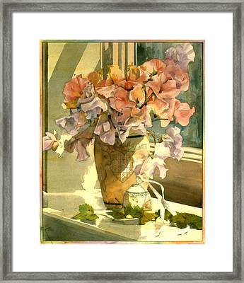 Sweetpea On The Windowsill Framed Print by Julia Rowntree