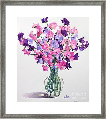 Sweetpeas Framed Print by Christopher Ryland