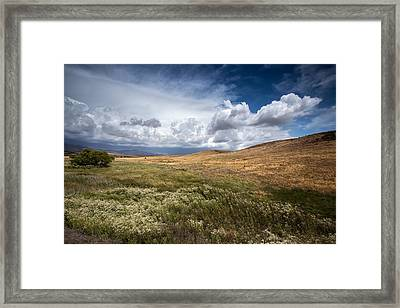 Swept Away Framed Print by Peter Tellone