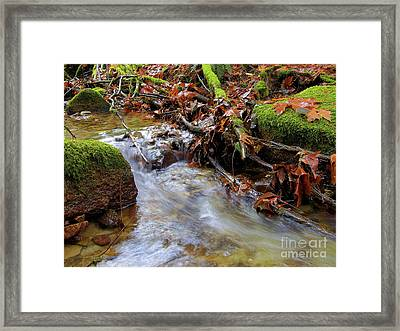 Swept Away Framed Print by Sharon Talson