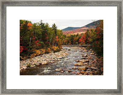 Swift River Painted With Autumns Paint Brush Framed Print