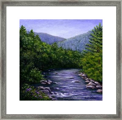 Swift River Framed Print