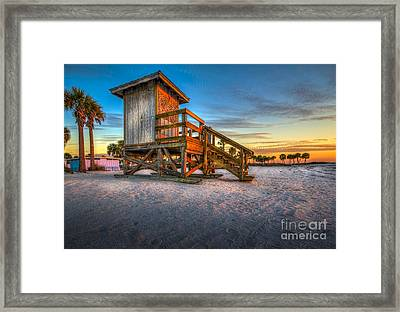 Swim At Your Own Risk Framed Print by Marvin Spates