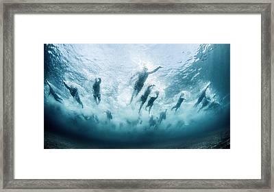 Swim Framed Print
