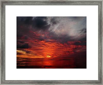 Swimmers Sunset Framed Print by Tony Reddington