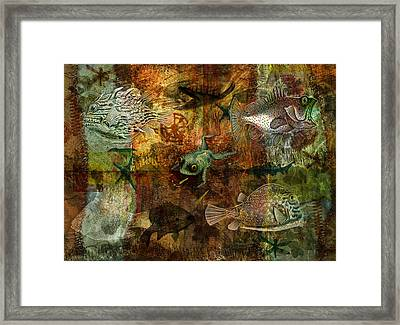 Swimming Against The Tide Framed Print by Sarah Vernon