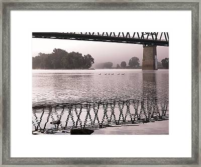 Swimming Down The Ohio Framed Print