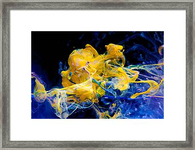 Swimming Elephant - Abstract Photography Wall Art Framed Print