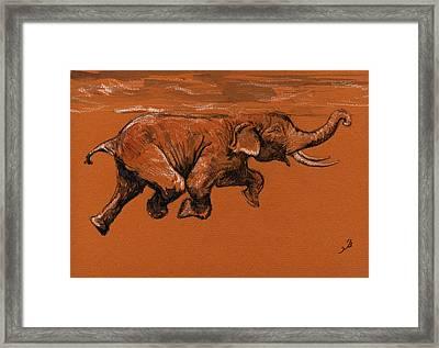 Swimming Elephant Framed Print by Juan  Bosco