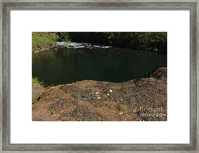 Swimming Hole  Framed Print by Tim Rice