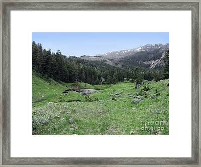 Swimming Hole Yellowstone Framed Print by Phil Welsher