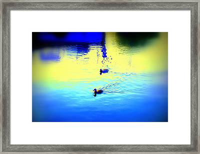 Swimming In The Morning, Swimming In The Evening  Framed Print by Hilde Widerberg