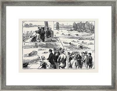 Swimming Match In The Thames For The Amateur Championship Framed Print by English School