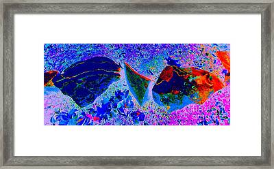 Swimming Through Space And Time				 Framed Print