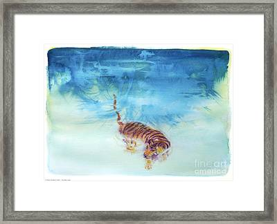 Swimming Tiger - 1 Framed Print by Terry Burkes