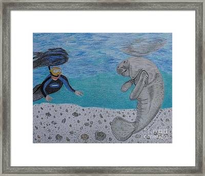 Swimming With The Manatee Framed Print by Gerald Strine