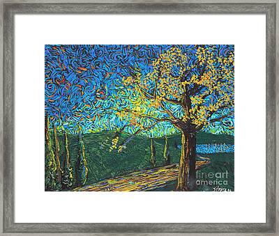 Swing By The Road Framed Print