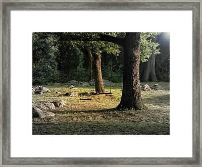 Swing For Two Framed Print by Steven Michael