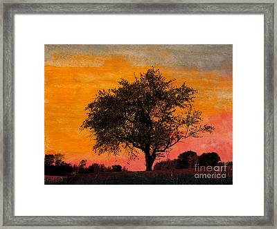 Swing Tree Framed Print by R Kyllo