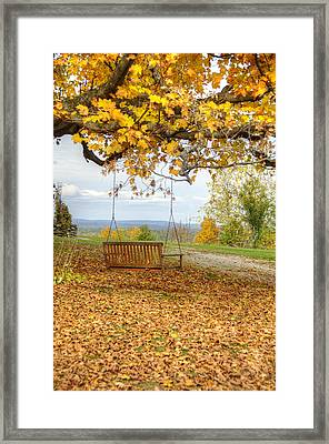 Swing With A View Framed Print