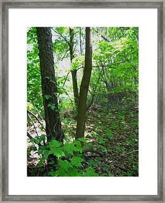Swirled Forest 1 - Digital Painting Effect Framed Print by Rhonda Barrett
