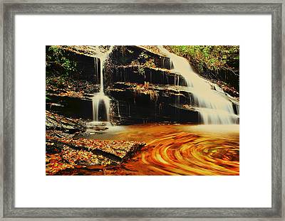 Swirling Leaves Framed Print by Rodney Lee Williams