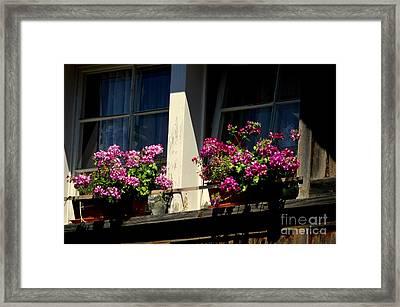 Swiss Chalet Flower Window Framed Print