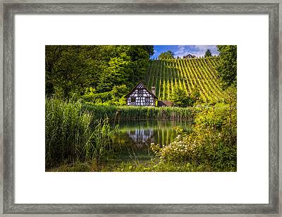 Swiss Cottage At The Vineyard Framed Print
