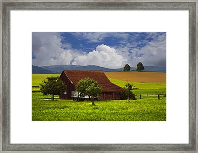 Swiss Farms Framed Print