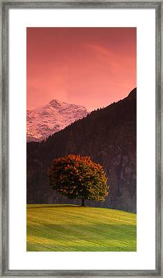 Switzerland, Alps Framed Print by Panoramic Images