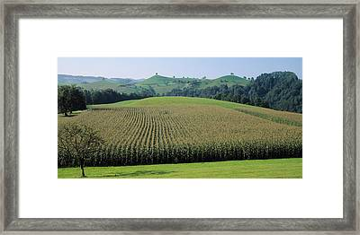Switzerland, Canton Zug, Panoramic View Framed Print