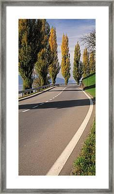 Switzerland, Lake Zug, View Of Populus Framed Print