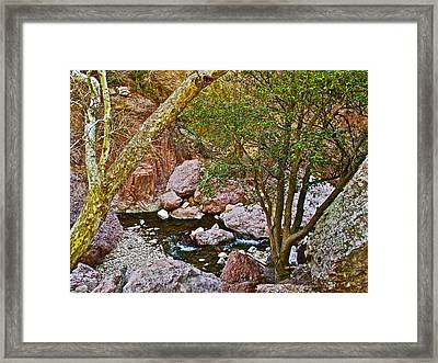 Sycamore And Cottonwood In Whitewater Catwalk National Recreation Trail Near Glenwood-new Mexico  Framed Print by Ruth Hager