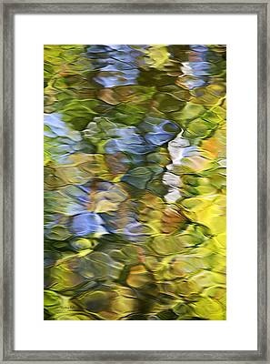 Sycamore Mosaic Framed Print by Christina Rollo