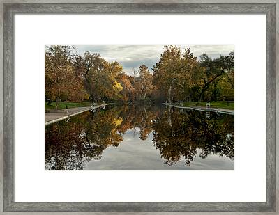 Sycamore Pool Reflection Framed Print