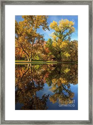 Sycamore Pool Reflections Framed Print by James Eddy