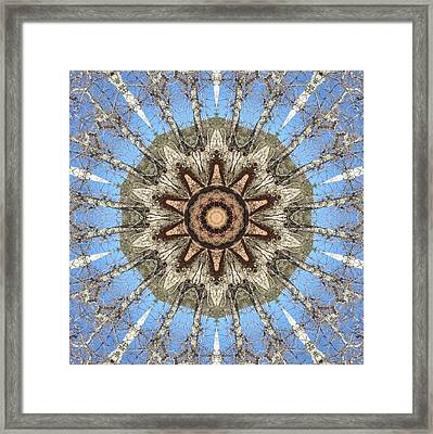 Framed Print featuring the digital art Sycamore Star Power by Trina Stephenson