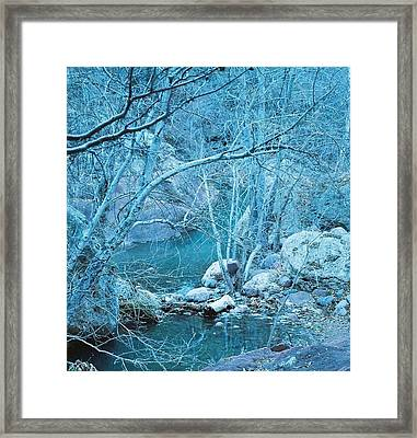 Sycamores And River Framed Print by Kerri Mortenson