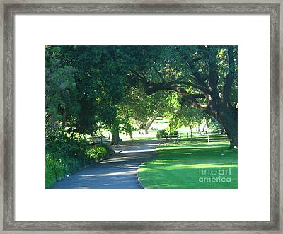 Framed Print featuring the photograph Sydney Botanical Gardens Walk by Leanne Seymour