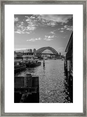 Sydney Harbour  Framed Print by Dasmin Niriella