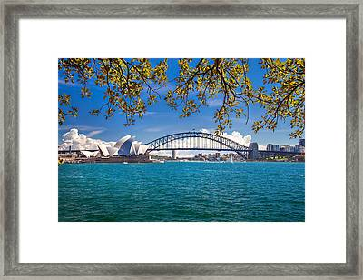 Sydney Harbour Skyline 2 Framed Print by Az Jackson