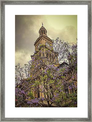 Sydney Town Hall Framed Print by Julie Palencia