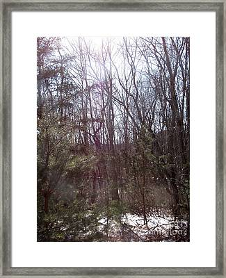 Framed Print featuring the photograph Sylphs by Melissa Stoudt