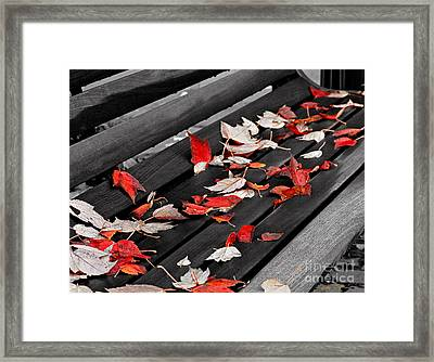 Sylva Bench 2003 Framed Print
