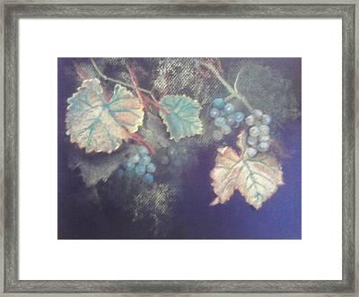 Sylvaner Framed Print